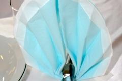 Hellblau-Hochzeitsdekoration